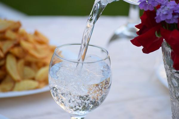 wydajny jonizator wody